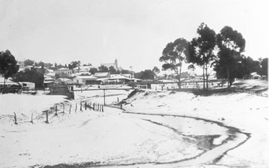 The result of the 1904 snow 