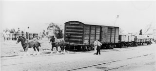 Horse shunting in Burra in the 1950s