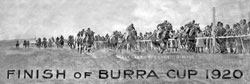 Dimitol winning the 1920 Burra Cup